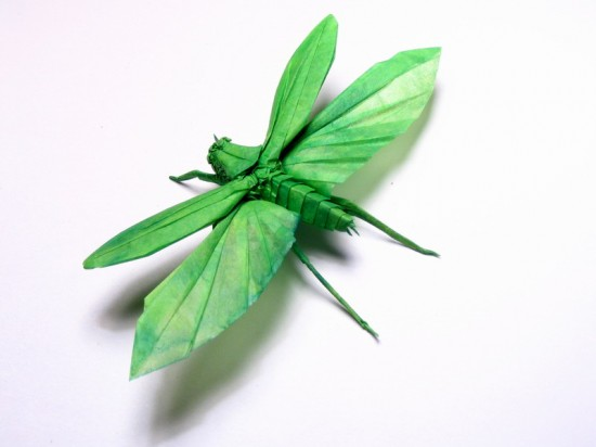 Origami Insects Heidi Gloppen